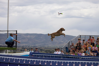 Soldier Hollow Sheepdog Classic 2011