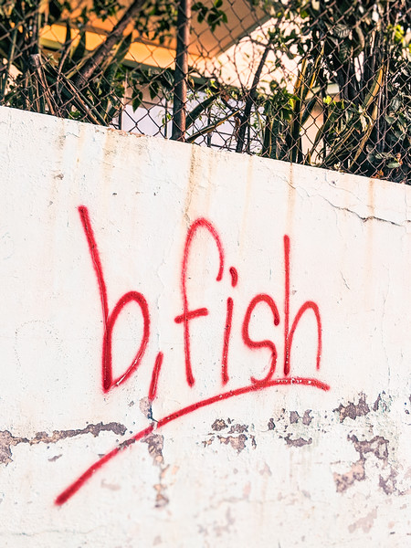 banana fish red  bfish-2.jpg