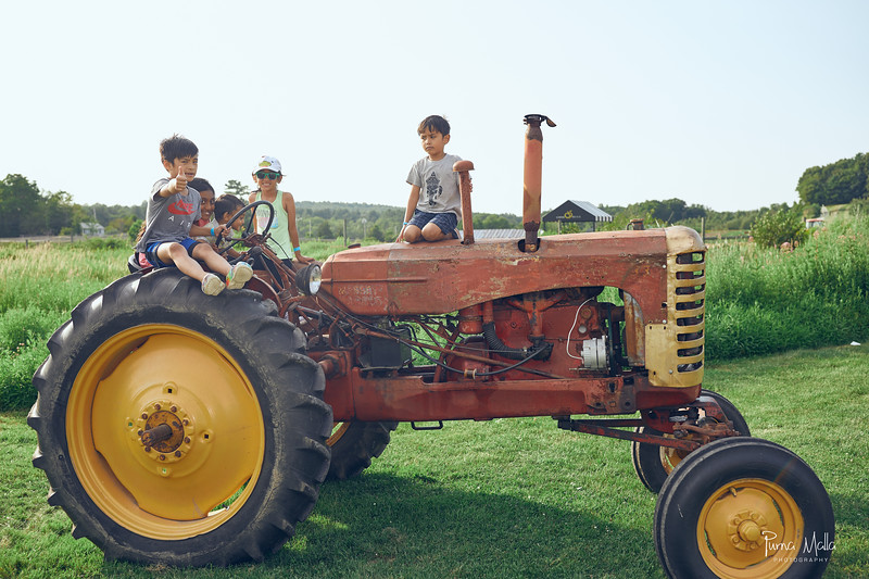 Cider Hill Farm 90.jpg