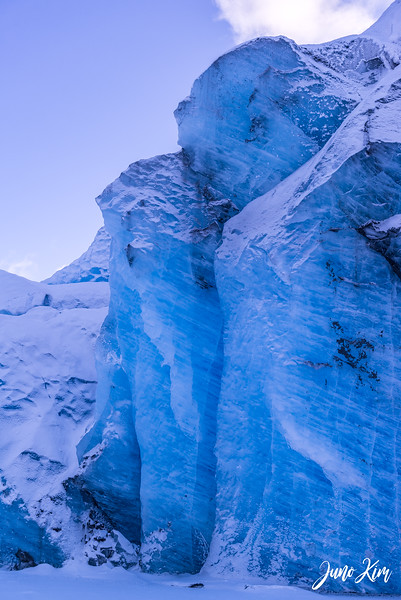 2020-01-17_Alaska Wild Guides-6102458-Juno Kim.jpg