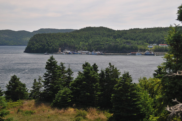 Random Island, July 2012