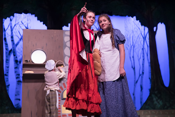 Into The Woods Show 2018
