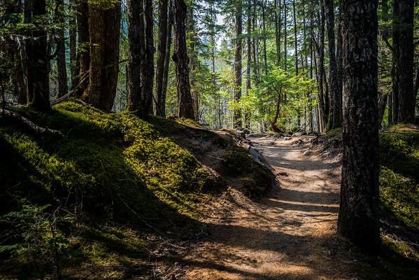 Mount Hood 2015