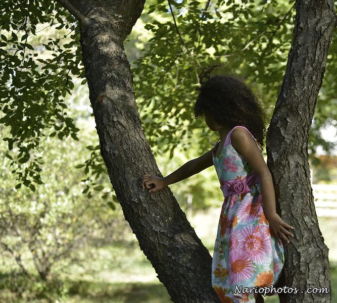 Amanda basses pregancy photo shoot _DSC9828