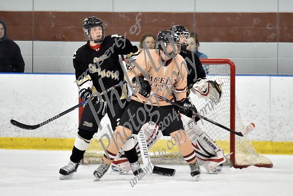 Governor Mifflin vs Berks Catholic Varisty High School Ice Hockey 2014 - 2015