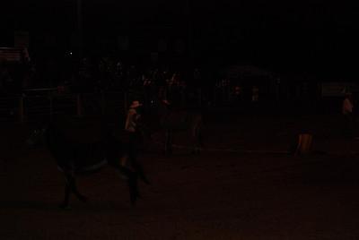 Wild Mule Catch/Ride
