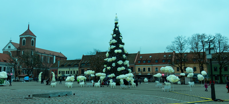 Christmas tree at the City Hall square.