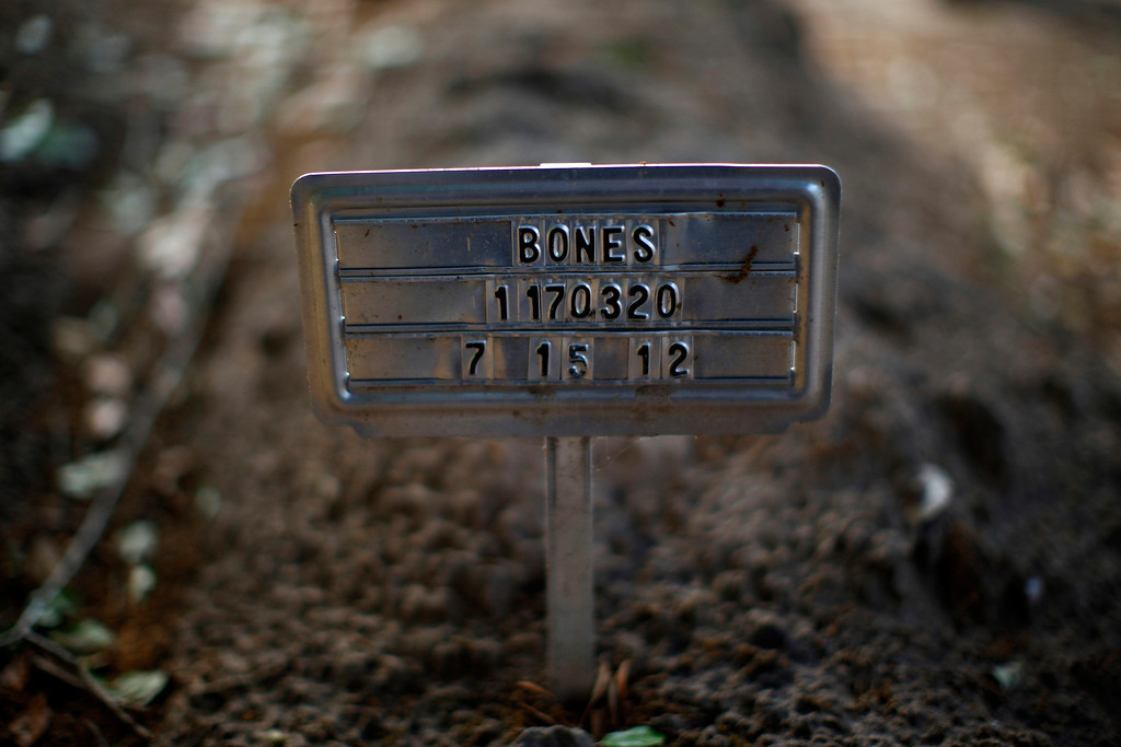 ". The unidentified grave of a person whose remains were found in the desert is seen in Falfurrias, Texas  April 1, 2013. Brooks County has become an epicentre for illegal immigrant deaths in Texas. In 2012, sheriff\'s deputies found 129 bodies there, six times the number recorded in 2010. Most of those who died succumbed to the punishing heat and rough terrain that comprise the ranch lands of south Texas. Many migrants spend a few days in a ""stash house\"", such as the Casa del Migrante, in Reynosa, Mexico, and many are ignorant of the treacherous journey ahead. Picture taken April 1, 2013. REUTERS/Eric Thayer"