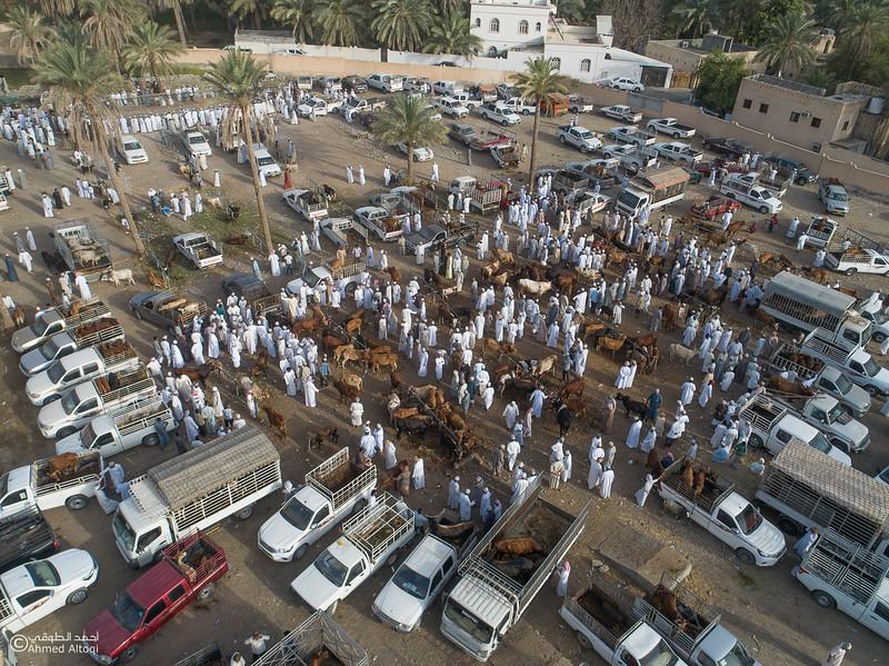 DJI_0051- Alrustq-Habtah- Oman.jpg