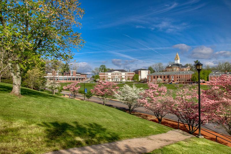 campus_5961_2_3.jpg