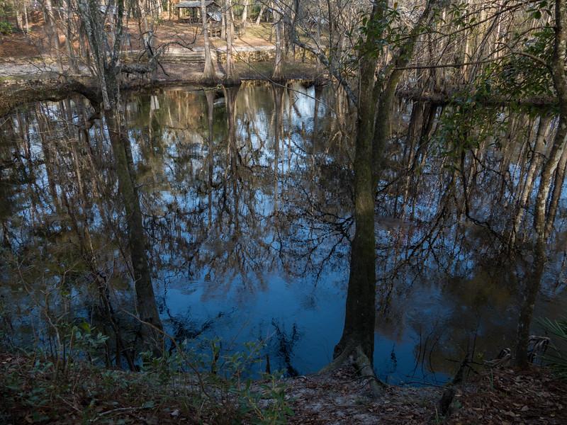 02-21--2019 Oleno River Trail (6 of 28).jpg