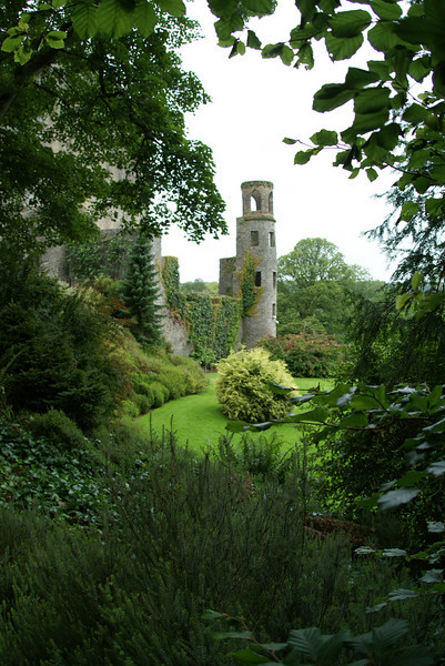 Our first stop after leaving Amsterdam was Cork, Ireland.  There is Blarney Castle.