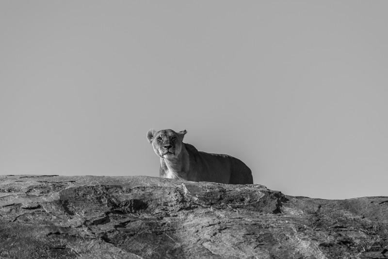 Tanzania_Feb_2018-698.jpg