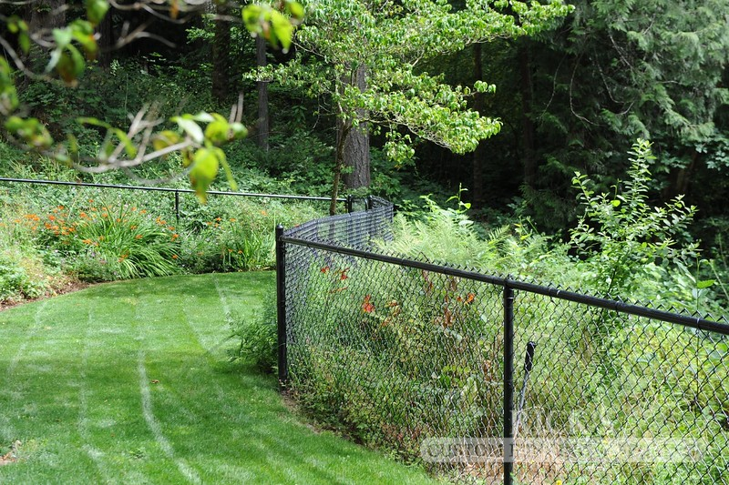 4124 - Black Chain Link Fencing