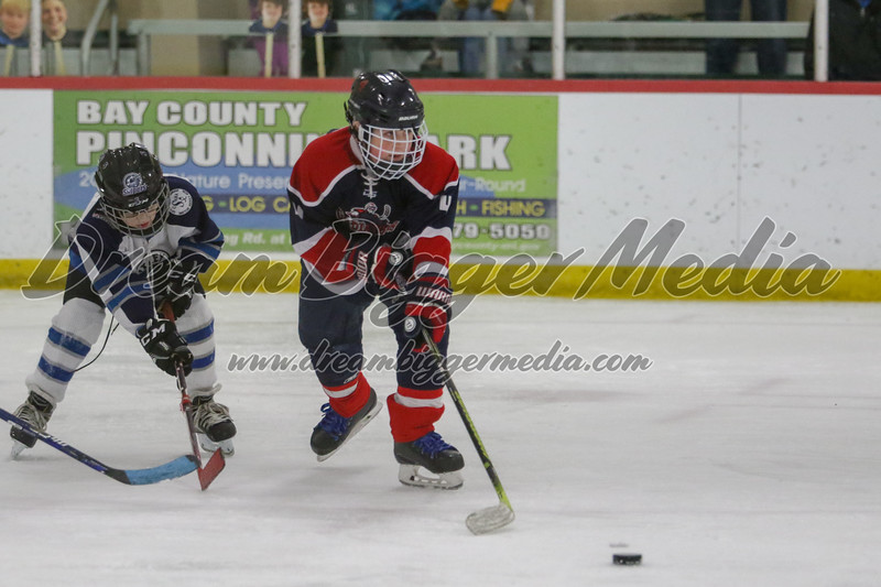 Gladwin Squirts Districts 020820 4975.jpg