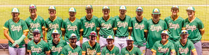2021 Geneseo 3A IL State Regional Baseball