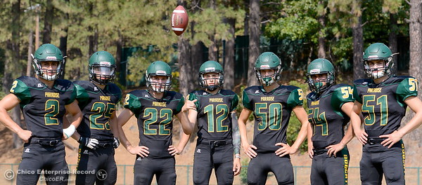 Paradise Football Preview 2015