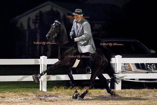 Gaited Horse Show Bolivar Saddle Club