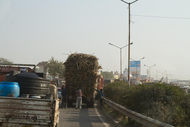 India_2012Feb-5570.jpg