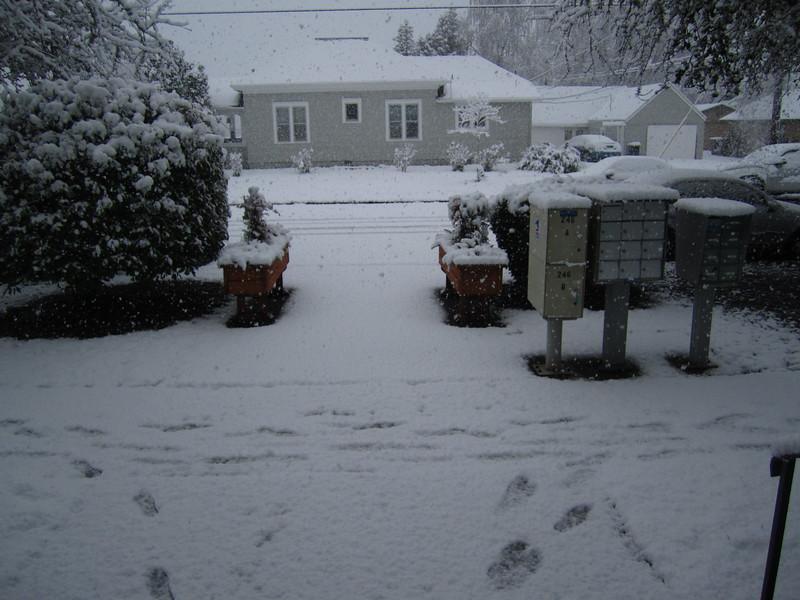 Oregon - Snow Day