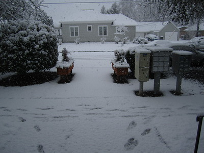 2011.02 - Feb
