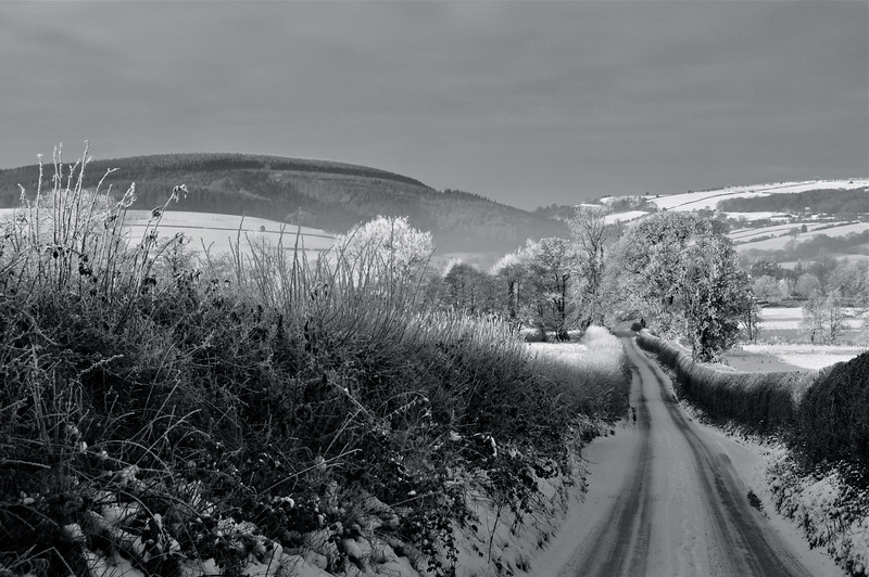 Winter in Shropshire