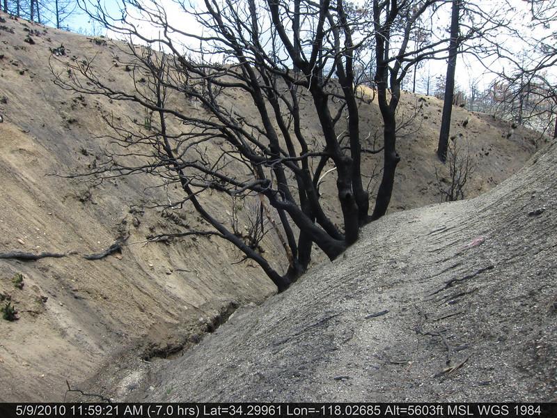 077-Vetter mtn Trail.JPG