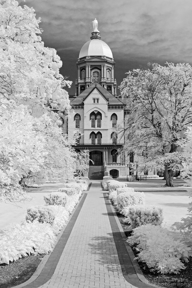 Main Building Golden Dome Infrared