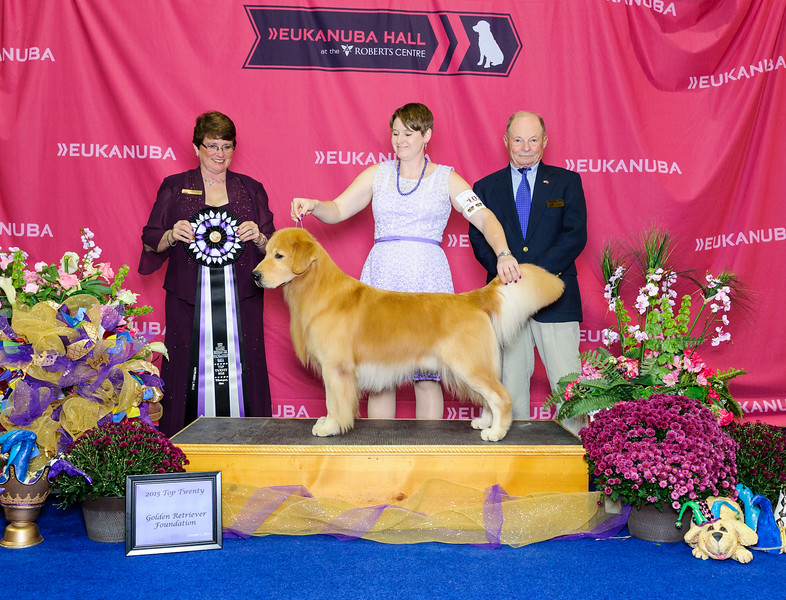 2015 Golden Retriever National