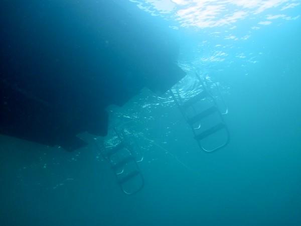 Diving Pennekamp August 2013