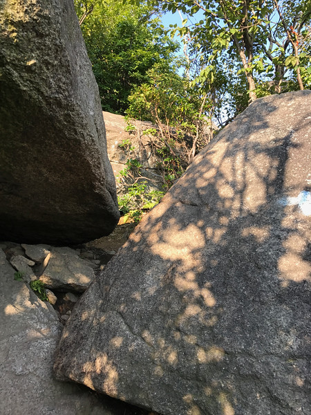 Old-Rag-Mountain-August-2017-13.jpg