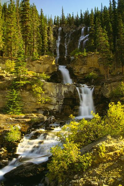 Tangle Falls - Jasper National Park