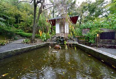 Zen Gardens Tokyo Kyoto Japan