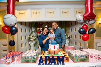 Adam's 1st Birthday Party