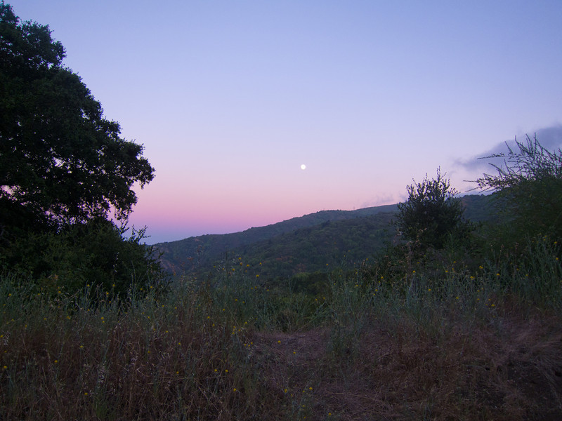 July 13: Moonrise from Page Mill Road