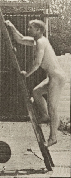 Nude man ascending a ladder
