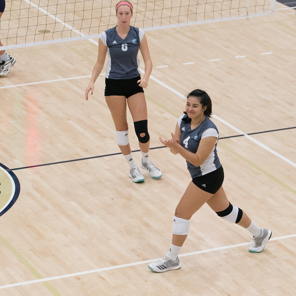 HPU Volleyball-92784.jpg