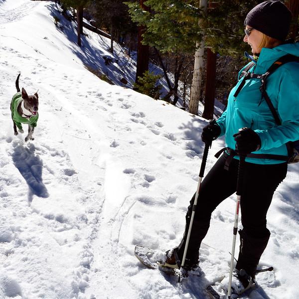 5_bigbear_snowshoeing_run2.jpg