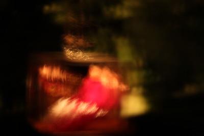 """Supreme Red"" - Leaf's Live Time-lapse"