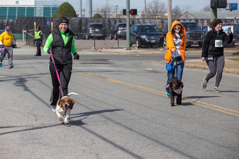 Richmond Spca Dog Jog 2018-721.jpg