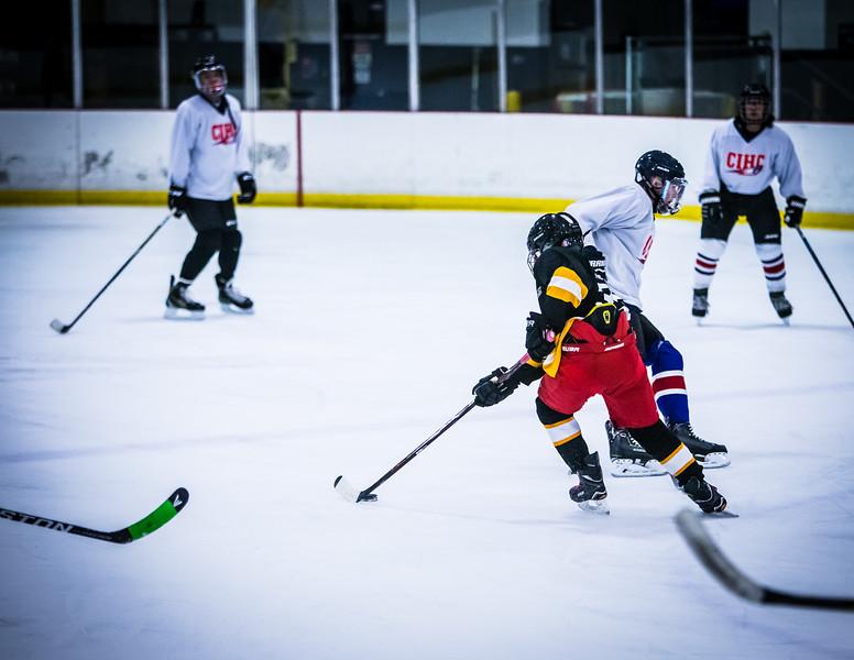 Bruins2-533.jpg