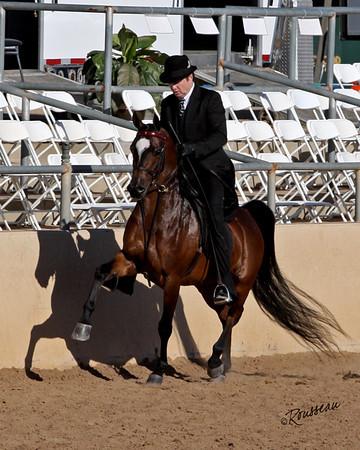 Scottsdale Arabian