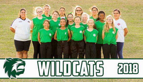 Wildcats 2018