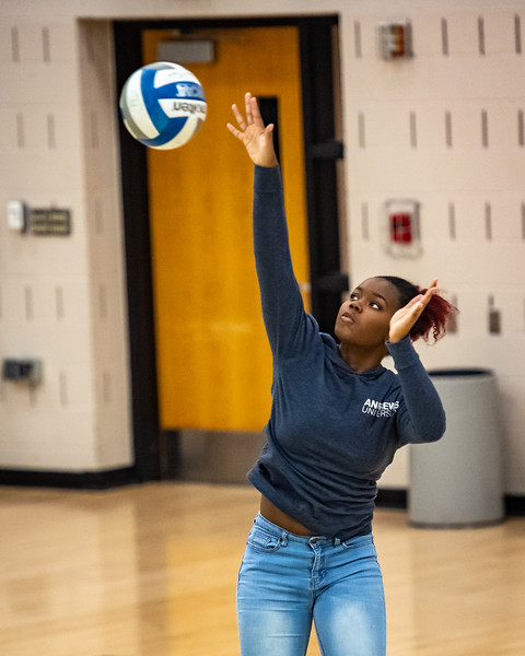 2018-12-01-Stevenson-Ladies-Volleyball-#-60.jpg