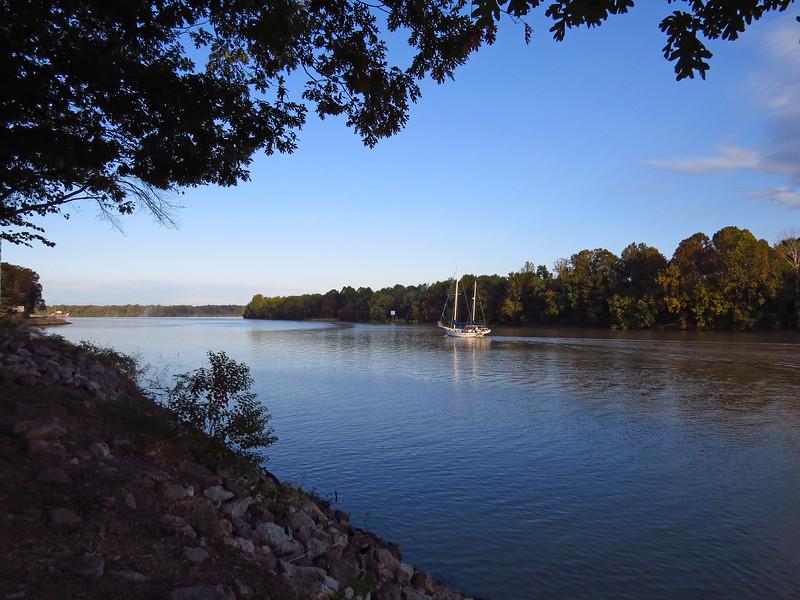 Foscue Creek Park, Tombigbee River, Demopolis, ALabama (16).JPG