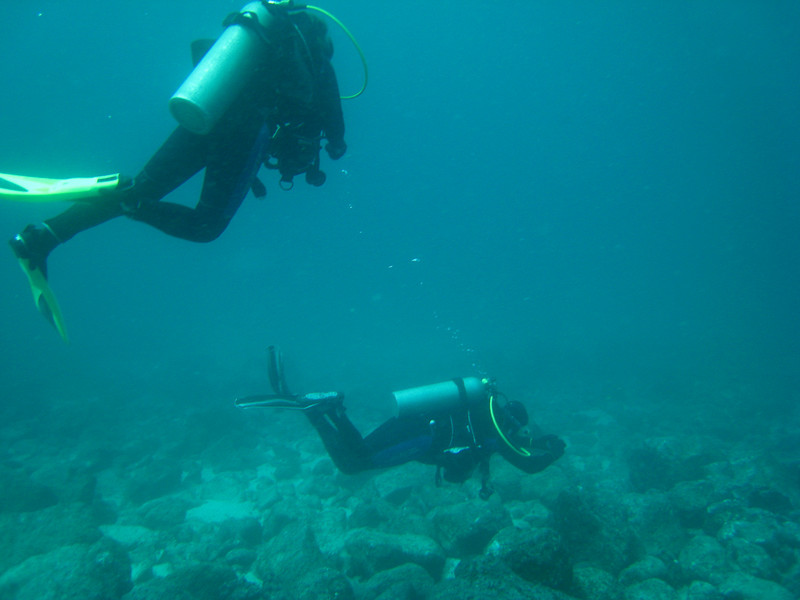 Diving in the Galapagos (353 of 392)