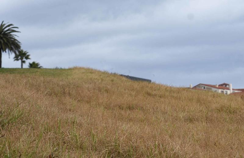 Hill.jpg