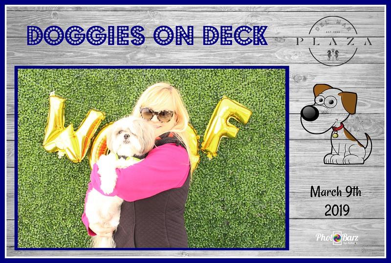 Doggys on Deck32.jpg