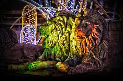 Lions & Lights