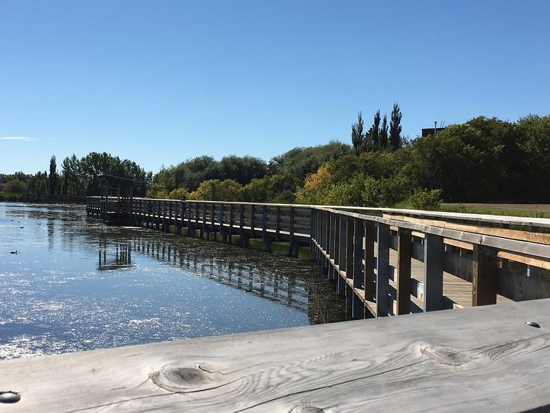Telford Lake Boardwalk